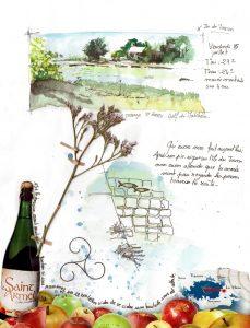 page composée d'un petit paysage en aquarelle de l'île du Tascon collage d'une publicité pour du cidre et ajout d'une fleur du marais séchée.